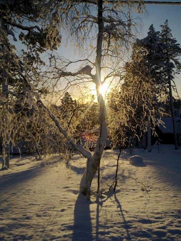 Aurinko alhaalla 210210